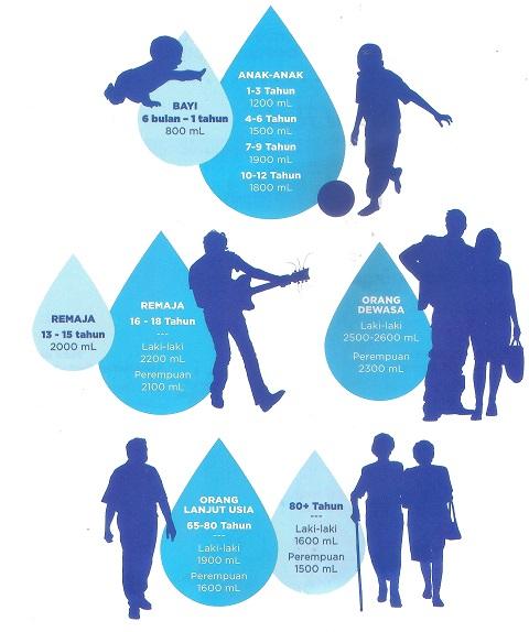 Kebutuhan Air Bagi Tubuh Manusia Dan Kehidupan Sehari Hari Keselamatan Keluarga